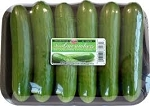 Mini Cucumbers - 6 Pack