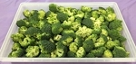 Fresh Cut Broccoli Florets 2.5lbs