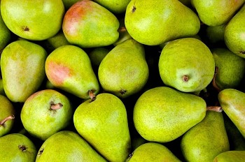 Pears -Approx 100/ Case